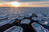"""Fotostrecke: Auf dem Forschungsschiff """"Polarstern"""" - Bild 8"""