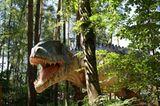 DVD: DVD-Tipp: Dinosaurier - Im Reich der Giganten - Bild 3