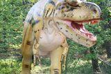 DVD: DVD-Tipp: Dinosaurier - Im Reich der Giganten - Bild 8
