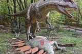 DVD: DVD-Tipp: Dinosaurier - Im Reich der Giganten - Bild 9