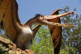 DVD: DVD-Tipp: Dinosaurier - Im Reich der Giganten - Bild 10