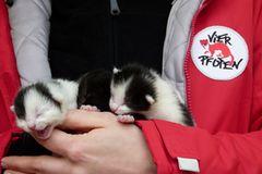 Interview: 20 Jahre für den Tierschutz - Bild 4