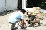 Interview: 20 Jahre für den Tierschutz - Bild 12