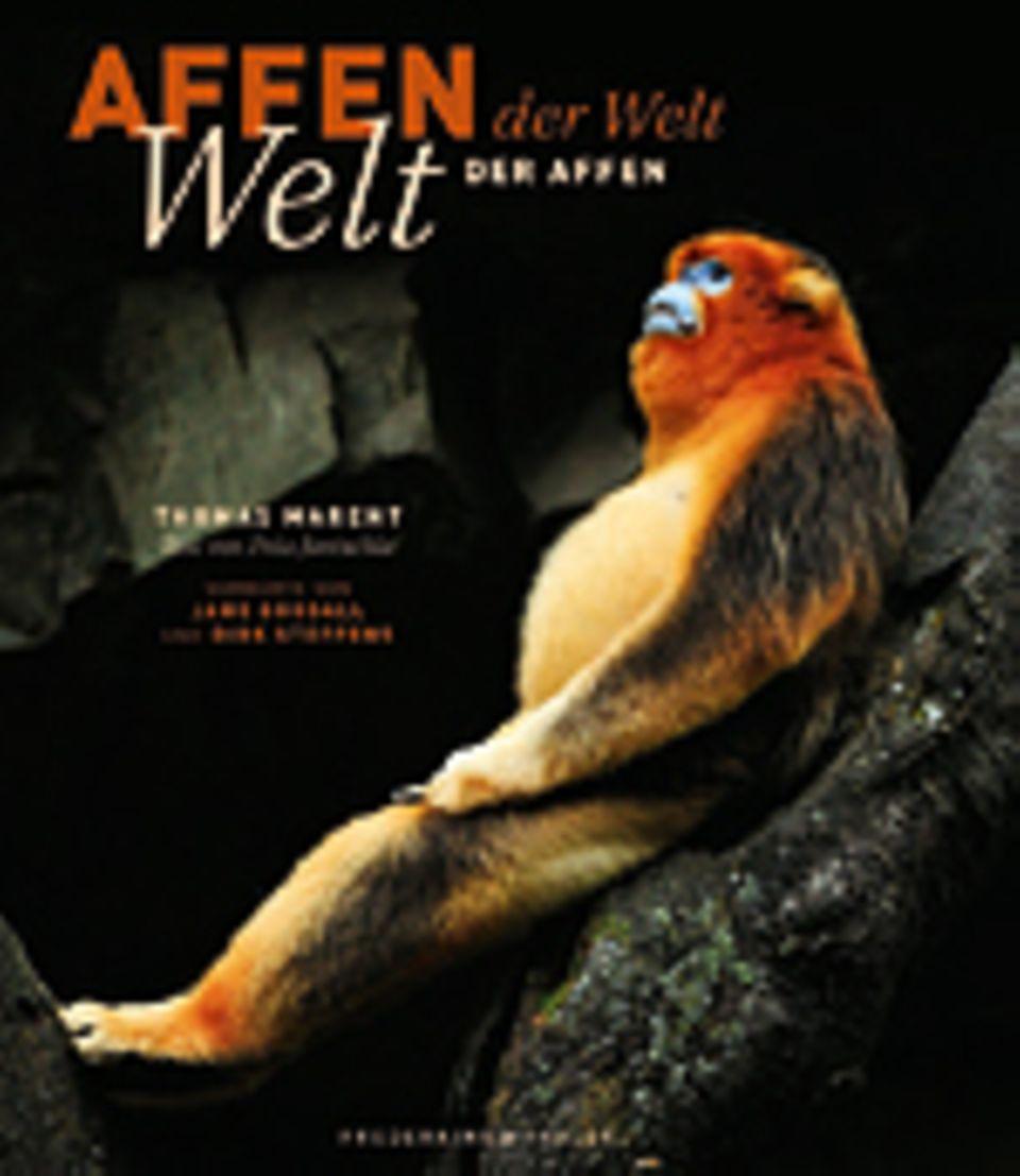 Fotogalerie: Die Welt der Affen