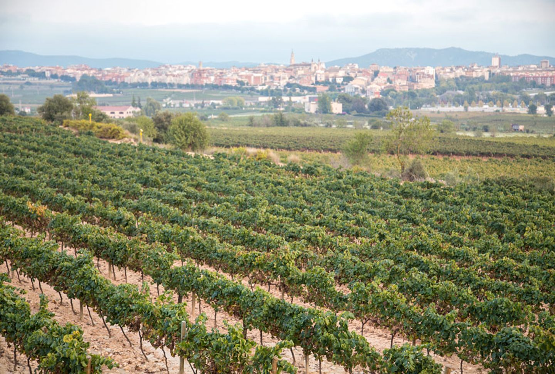 Vilafranca de Penedès