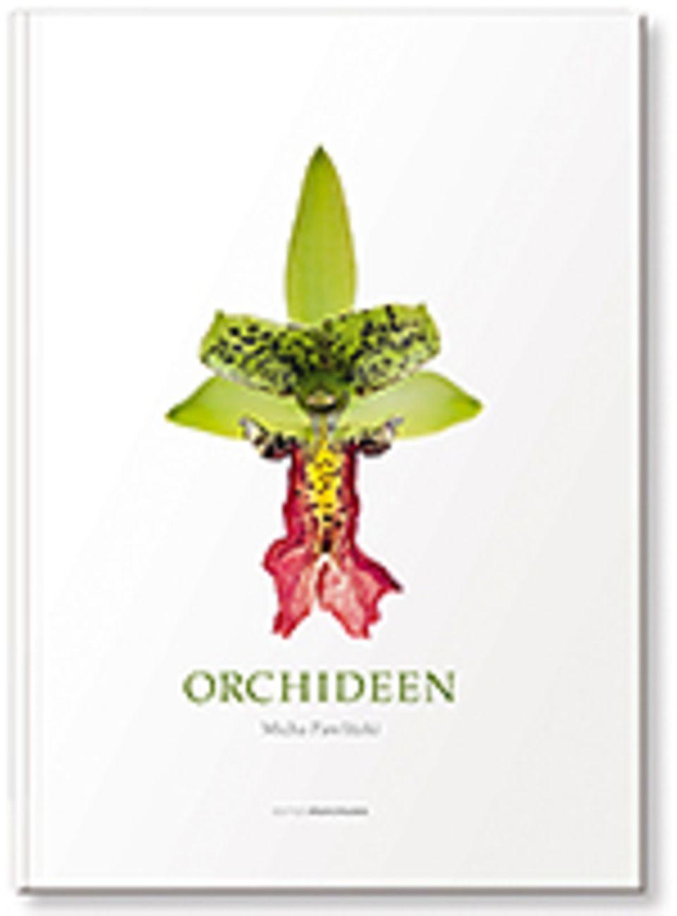 Orchideen: Micha Pawlitzki Orchideen 312 S., 450 Farbfotos Edition Panorama 2015 78 Euro