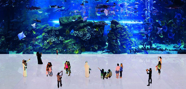 Dubai Mall, The Aquarium, 2010