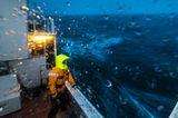 Seekrankheit und steifgefrorene Handschuhe
