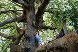 Naturparadies auf Pilion
