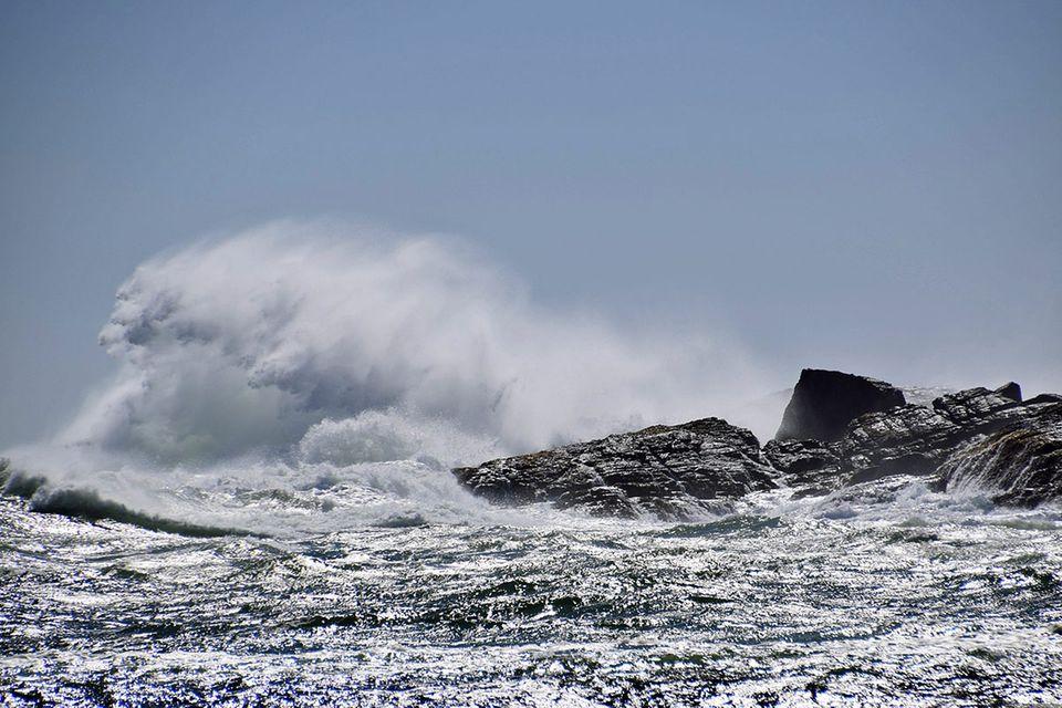 "Fotowettbewerb: Fotowettbewerb ""Ozeane"": Die Gewinner"