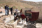 Vier Pfoten: Jordanien: Hilfsprojekt für Esel und Pferde - Bild 8