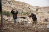 Vier Pfoten: Jordanien: Hilfsprojekt für Esel und Pferde - Bild 9