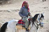 Vier Pfoten: Jordanien: Hilfsprojekt für Esel und Pferde - Bild 14