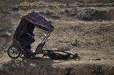 Vier Pfoten: Jordanien: Hilfsprojekt für Esel und Pferde - Bild 15