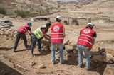 Vier Pfoten: Jordanien: Hilfsprojekt für Esel und Pferde - Bild 16