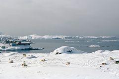 Ilulissat 3, 2010