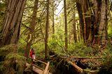 Pacific Rim Nationalpark, British Columbia