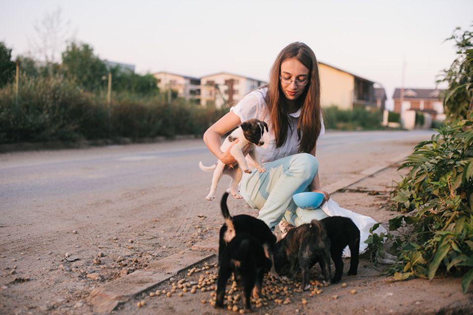 Tiere: Tierschutz