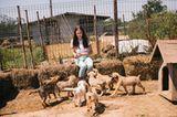 Tierschutz in Rumänien: Jedes Hundeleben zählt - Bild 6