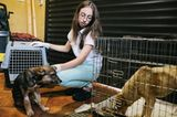 Tierschutz in Rumänien: Jedes Hundeleben zählt - Bild 9