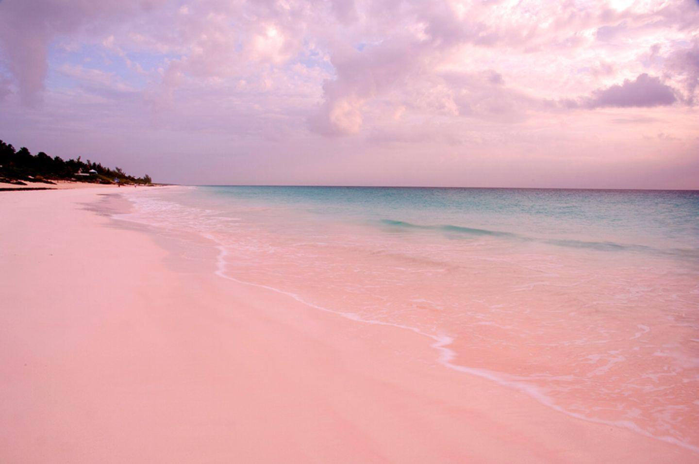 Karibik: Bahamas, Harbour Island, Pink Sand Beach