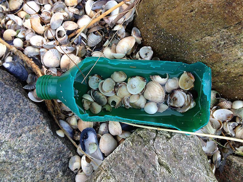 Plastikmüll am Strand - Umweltschutz