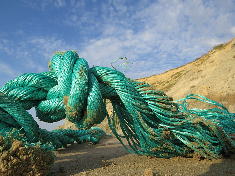 Umweltschutz: Strandgut mal anders - Bild 2