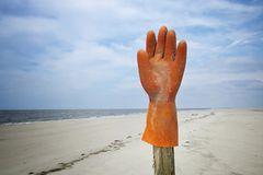 Umweltschutz: Strandgut mal anders - Bild 3
