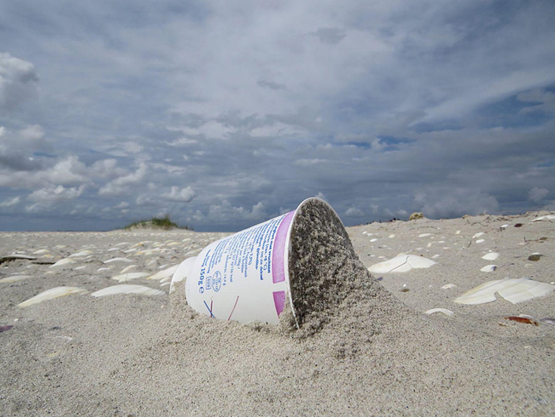 Umweltschutz: Strandgut mal anders - Bild 5
