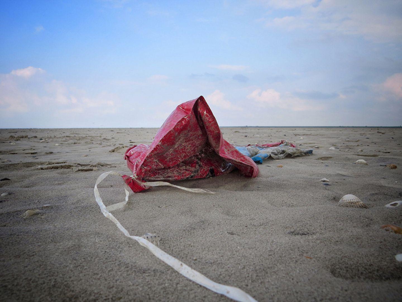 Umweltschutz: Strandgut mal anders - Bild 6