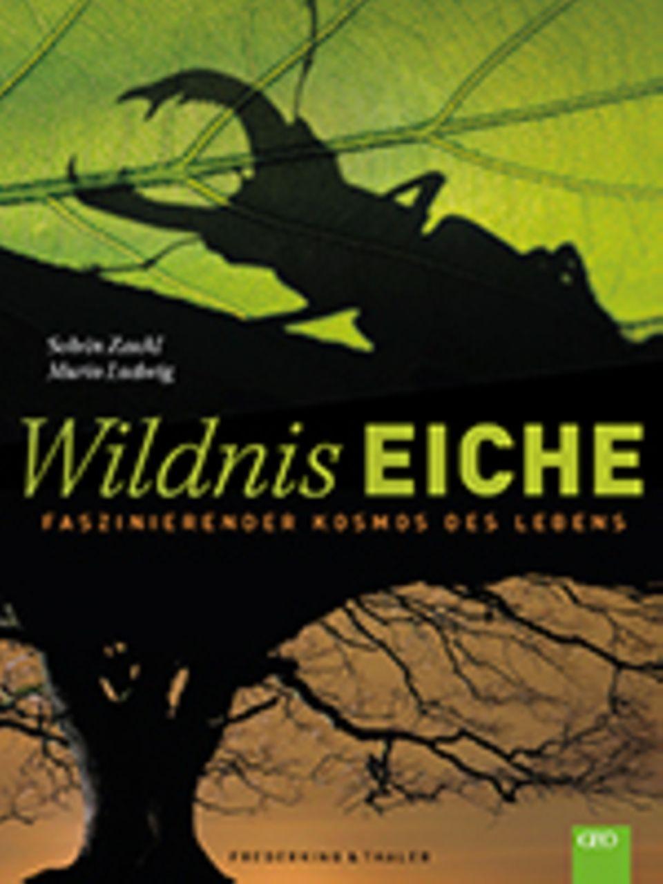Artenvielfalt: Solvin Zankl, Mario Ludwig Wildnis Eiche. Faszinierender Kosmos des Lebens 160 Seiten, 140 Abbildungen Verlag Frederking & Thaler 39,99 Euro