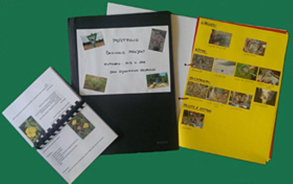GEO-Tag der Artenvielfalt: Die Klassen 10D und 10E schickten uns Fotos und Übersichten der Artenfunde, Bodenanalysen sowie das sorgfältig gestaltete Bestimmungsbuch. Uns erreichte zudem ihr Filmbeitrag auf CD-Rom