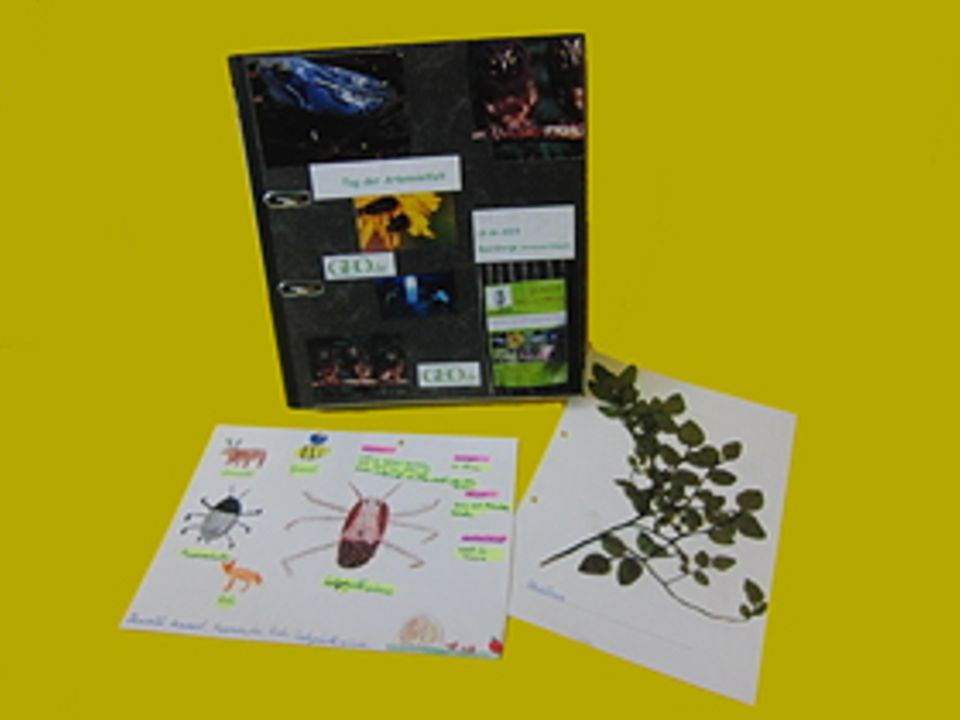 GEO-Tag der Artenvielfalt: Die Schüler der Grundschule Seehausen können sich über ein großes Buchpaket freuen