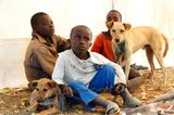 Tierärzte weltweit: Fotostrecke: Botschafter für den Tierschutz - Bild 2