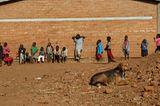 Tierärzte weltweit: Fotostrecke: Botschafter für den Tierschutz - Bild 5