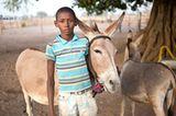 Tierärzte weltweit: Fotostrecke: Botschafter für den Tierschutz - Bild 7