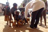 Tierärzte weltweit: Fotostrecke: Botschafter für den Tierschutz - Bild 9
