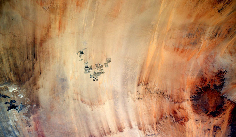 Bewässerte Felder in der Wüste