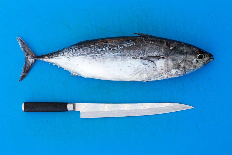 Seltener Fisch