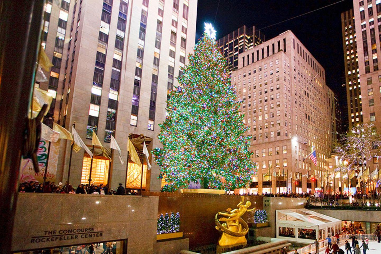 Den berühmtesten Weihnachtsbaum der Welt bestaunen
