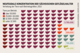 Konzentration in Sachsen