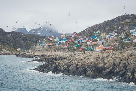 Endstation Diskobucht: Grönland mit dem Küstenschiff entdecken