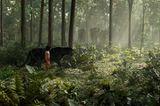 Kino: Filmtipp: The Jungle Book - Bild 5