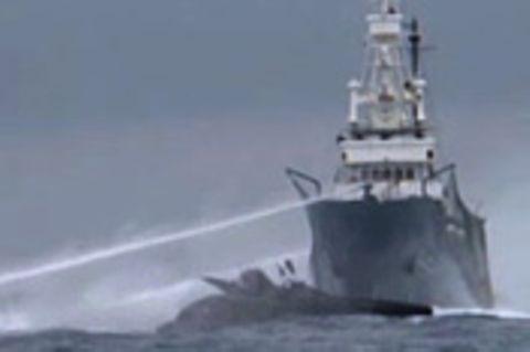 Walfänger gegen Aktivisten: Krieg auf dem Meer