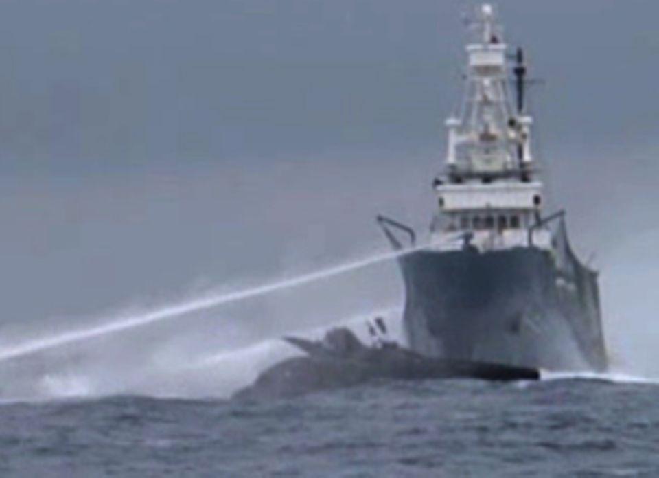 """Auf Kollisionskurs: Im Video ist zu sehen, wie der Walfänger die """"Ady Gil"""" seitlich rammt"""