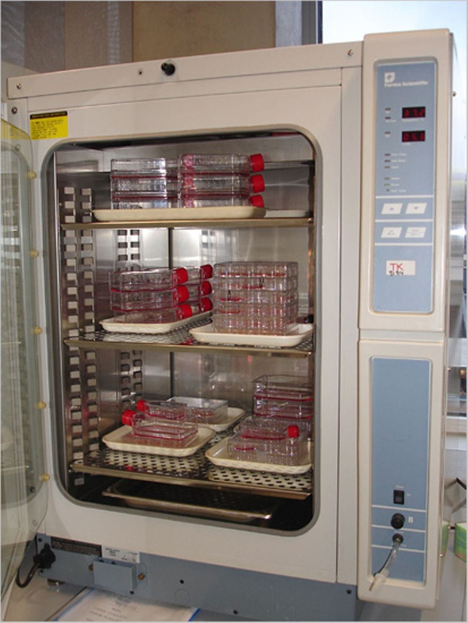 Im Inkubator werden die Zellkulturen frisch gehalten