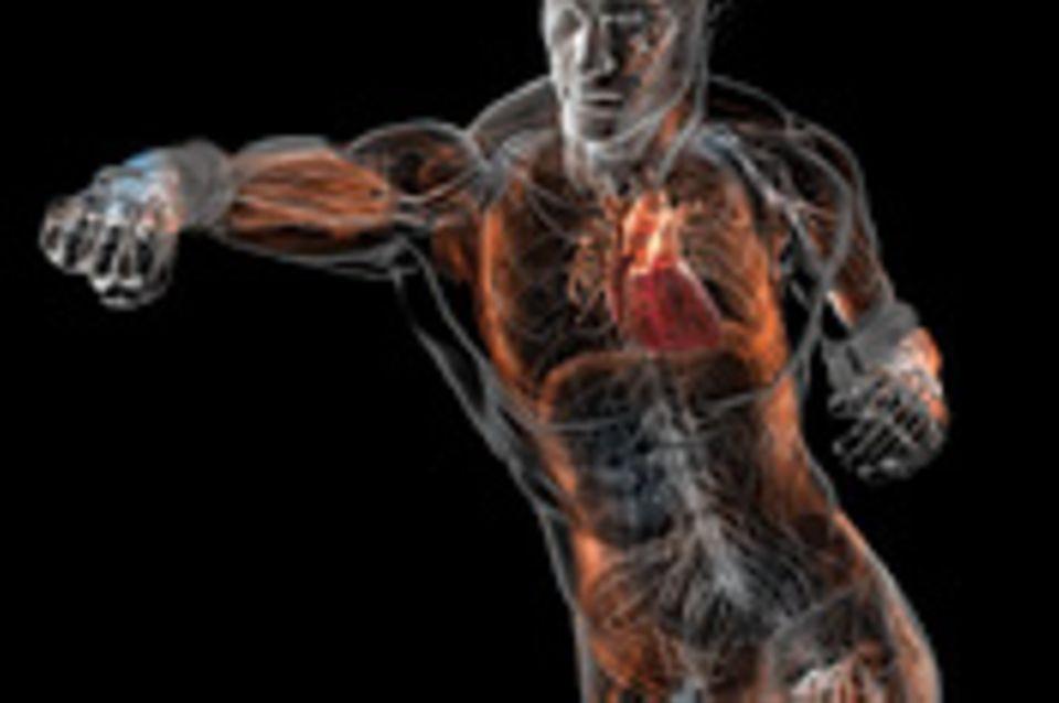 Vorschau: Was uns der Körper zu sagen hat