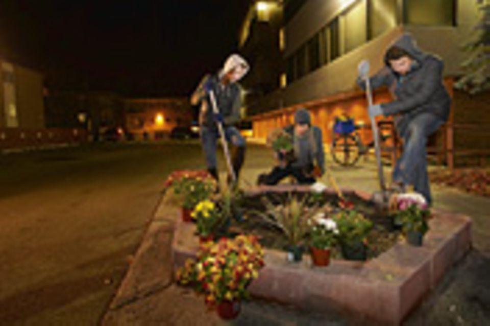 Guerilla Gardening: Stadtrebellen mit Saatgut