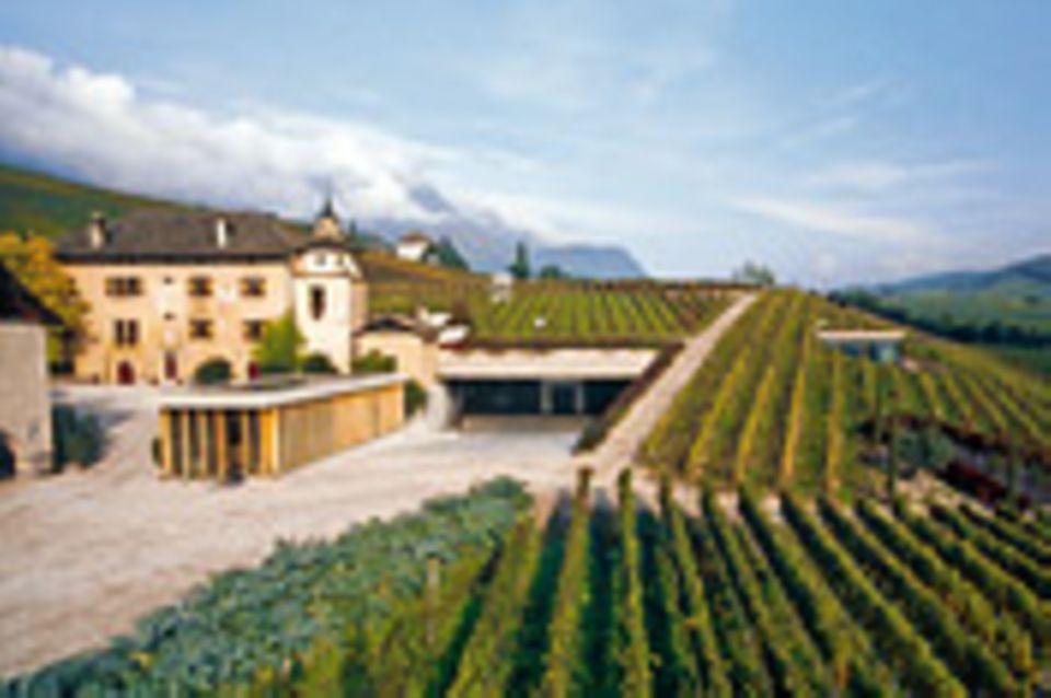Südtirols Weinkönige