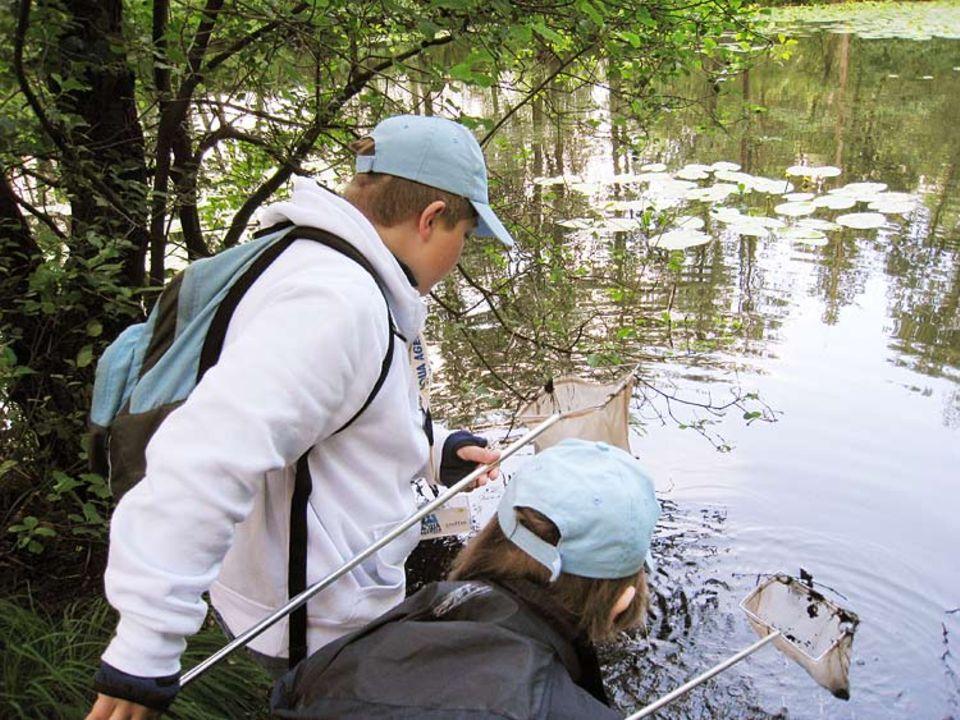 Aqua-Agenten: Auch im Teich suchen sie nach Wasserbewohnern